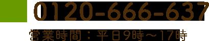 tel:0120-666-637